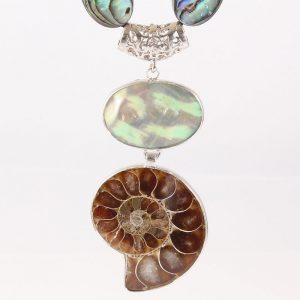 Oceana Papua Shell Ammonite Necklace